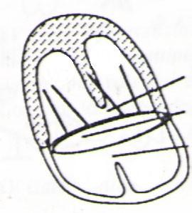 word image 297