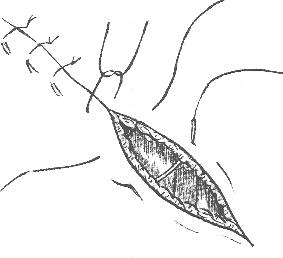 word image 309