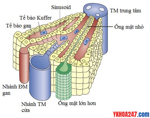 word image 107